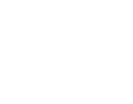 Dynaquest Angels Logo (White)